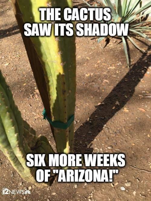 Arizona version of Groundhog day