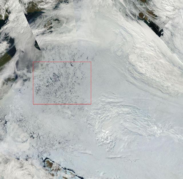 Czapa polarna Arktyki