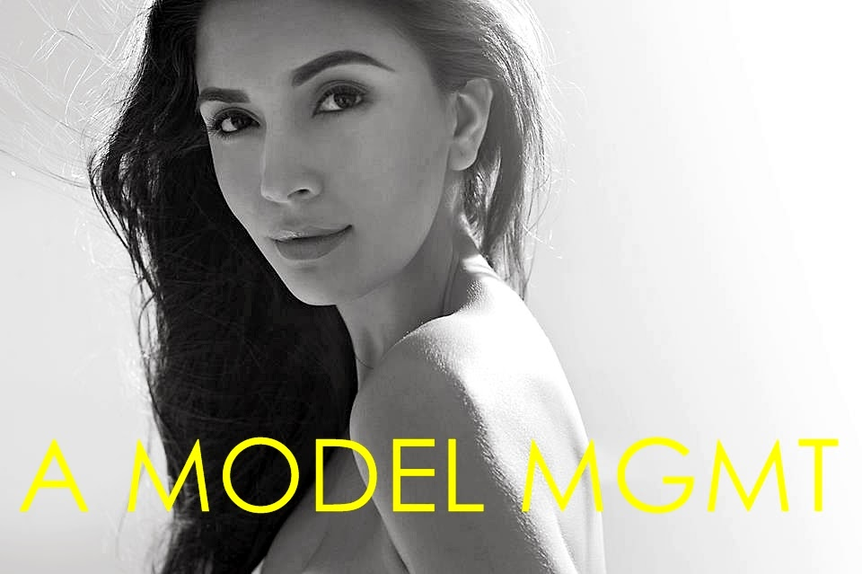 A MODEL MGMT