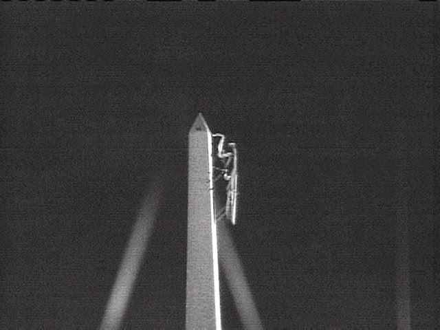 Mantis+monument.jpg