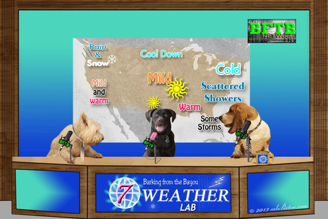 BFTB Weather desk with three dogs and USA map of weather