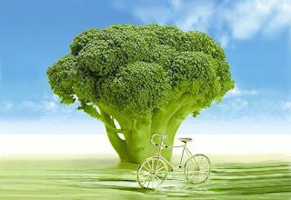 broccoli valori nutrizionali