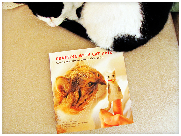 crafting with cat hair pdf