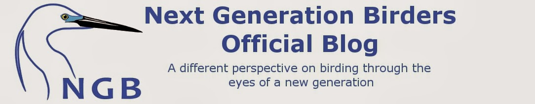 Next Generation Birders Official Blog