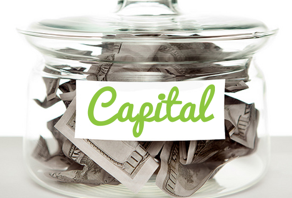 Innovative and Flexible Capital Raising in 2014