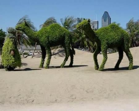 Potongan Rumput yang Menakjubkan (10 Gambar)