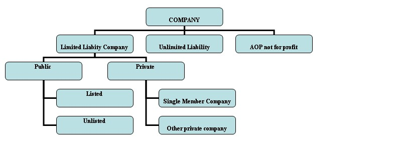 unlimited liability company law case Business economics  english  geography  history  law  maths  of the company however, limited liability does not  unlimited liability.