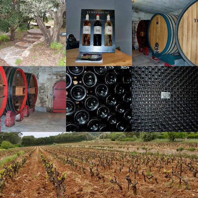 cave-vins-vignoble-terrebrune-alessaknox.be