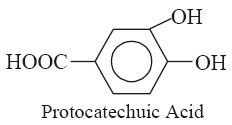 Protocatechuic-Acid