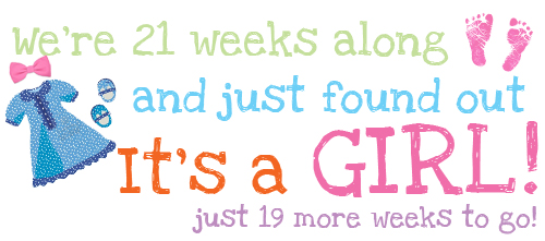 We're 21 weeks along and just found out It's a Girl! Just 19 more weeks to go!