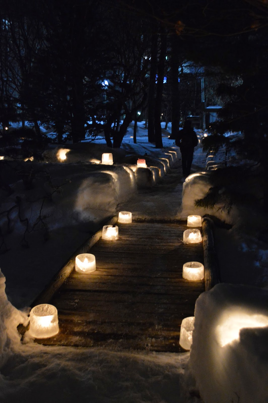 Japanese Garden At Night sapporo snow festival part 6: nakajima park at night ~ jenna in japan