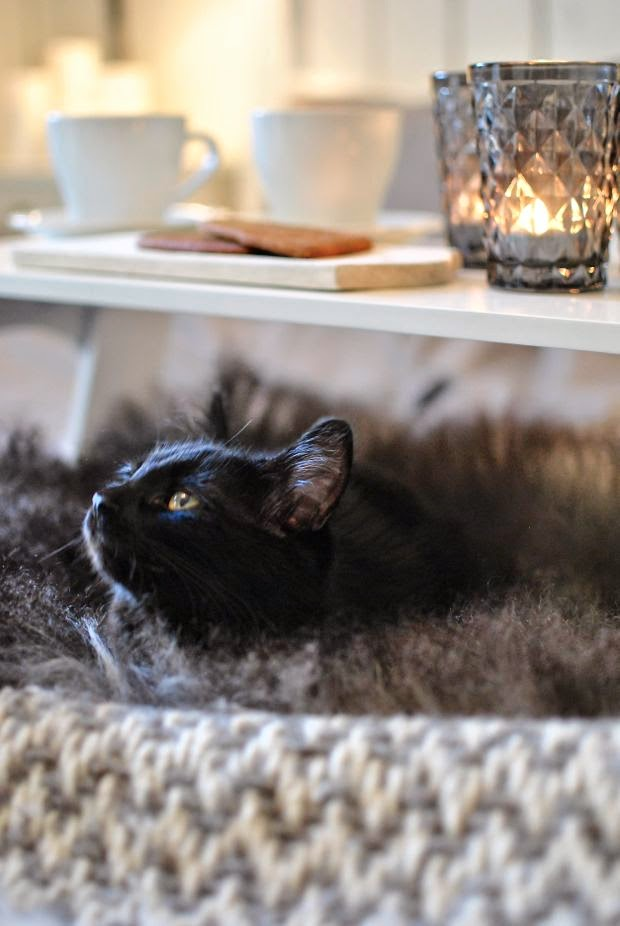 kattunge fårskinn sängbricka