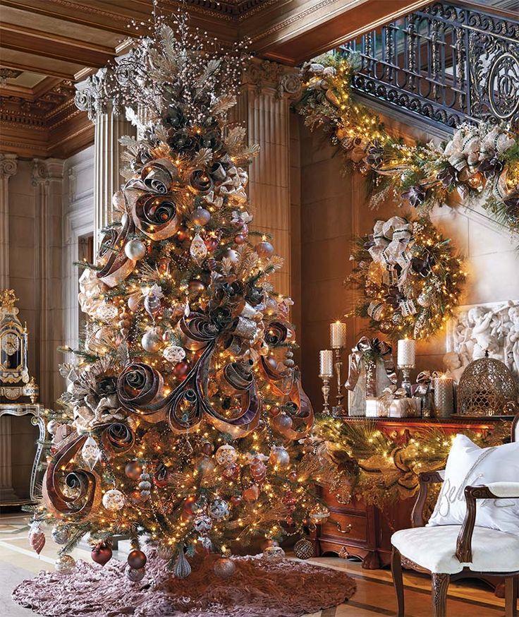 Holiday Beautiful Christmas Trees Christmas Time