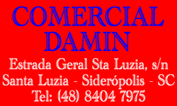COMERCIAL DAMIN
