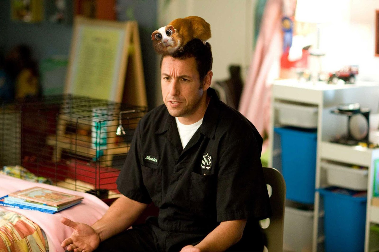 All about hollywood stars adam sandler best american for Bed stories online