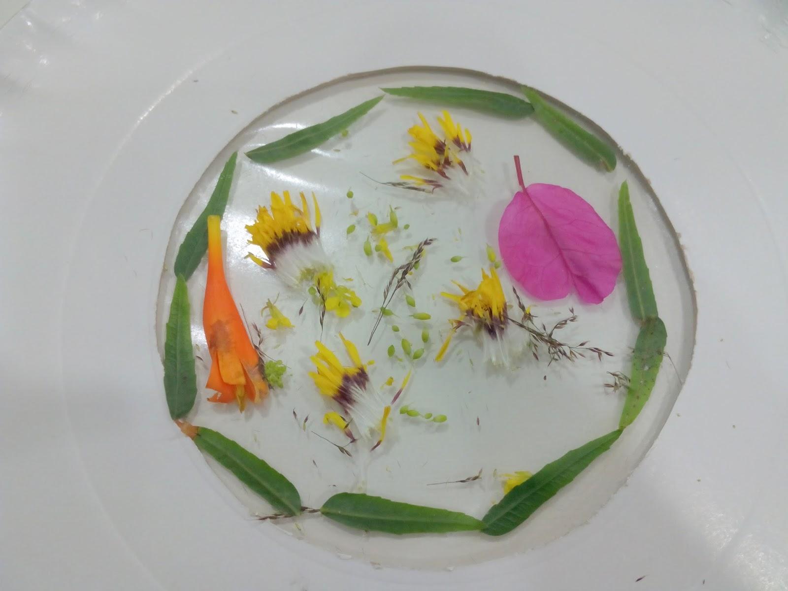Febrero es as vidrieras vegetales - Como hacer una vidriera ...
