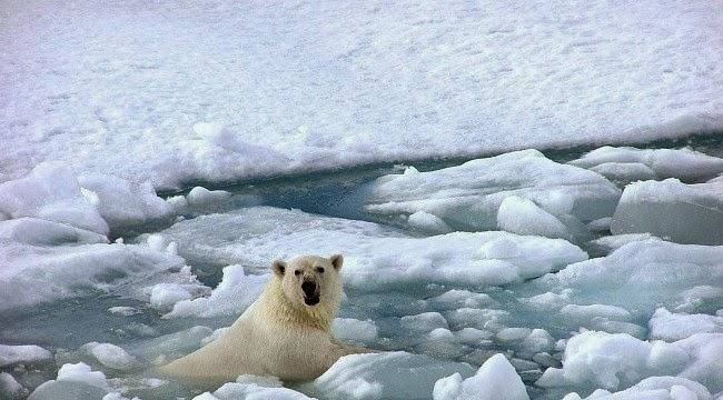 Inti Es Berumur 2.000 tahun Singkap Perubahan Iklim