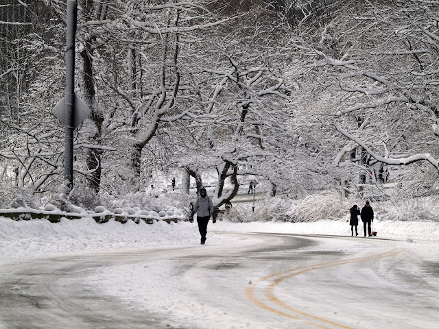 New Yorkers exiting Central Park after enjoying a walk in Nemo's snow