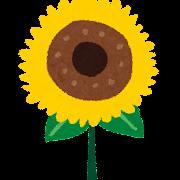 夏のイラスト「向日葵」