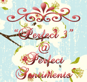 Perfect Sentiments Challenge PSC24