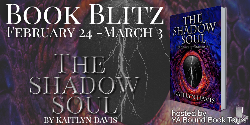 The Shadow Soul Book Blitz + Giveaway