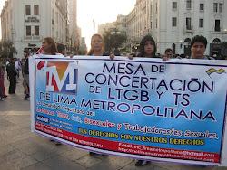 MESA DE CONCERTACION LTGB Y TS DE LIMA METROPOLITNA