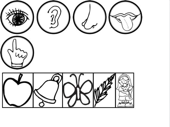 Five senses mr potato head printable sketch coloring page for Senses coloring pages