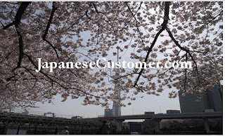 Tokyo skytree and cherry blossoms copyright peter hanami 2013