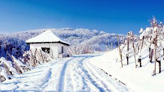 Paisaje de invierno blanco