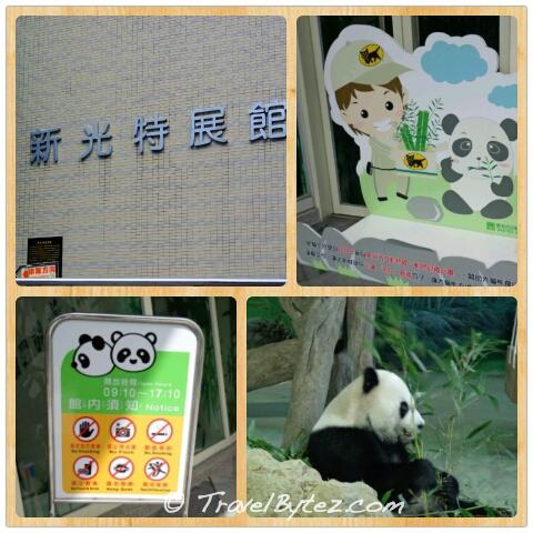 Taipei Zoo Panda Exhibition