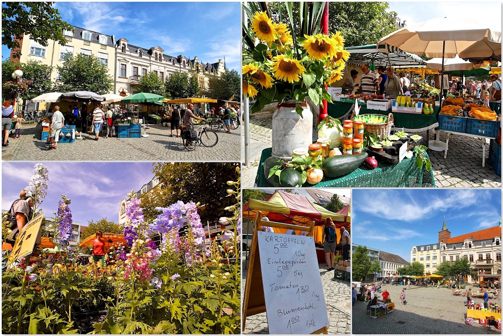 Spezialmarkt+Markt+Bernau+(1)