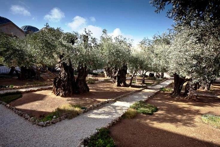 Holylandsites Jerusalem Garden Grotto Of Gethsemane