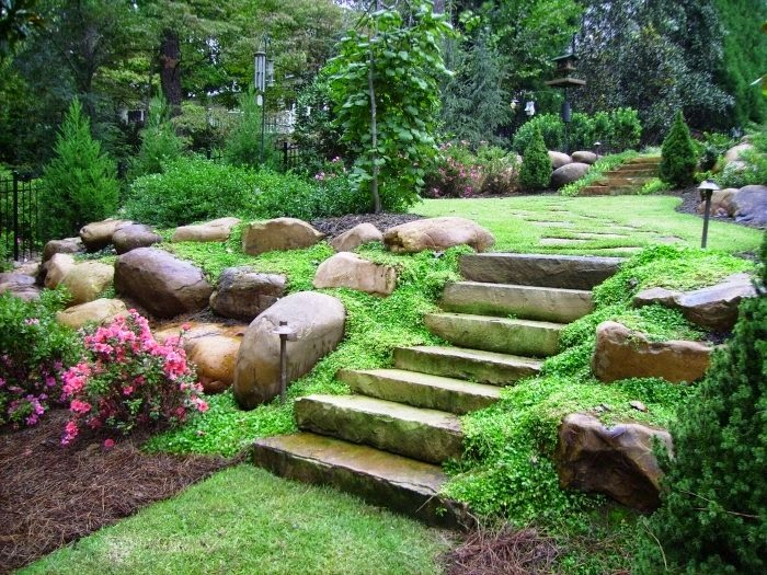 Large Backyard Landscape Ideas