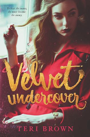 Velvet Undercover book cover