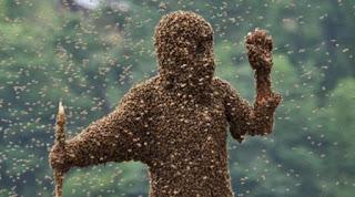 Ήθελε να καταστρέψει κυψέλη, και τον έκαναν μαύρο απ΄τα τσιμπήματα οι μέλισσες!