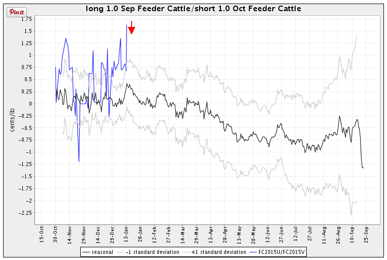 spread feeder cattle scarr visual trading