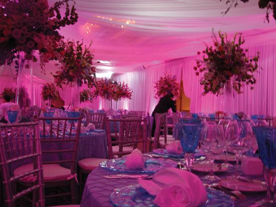 Wedding LED Lights