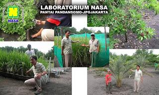 Produk NASA sudah diuji di Pantai Pandansomo, Jogjakarta yaitu di hamparan pasir.