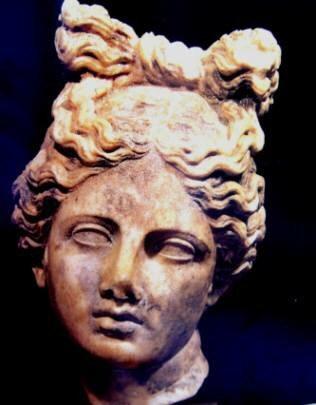 koka e artemises gjetur ne apoloni i takon shekullit III para krishtit