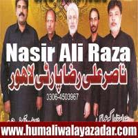 http://ishqehaider.blogspot.com/2013/11/nasir-ali-raza-lahore-party-nohay-2014.html