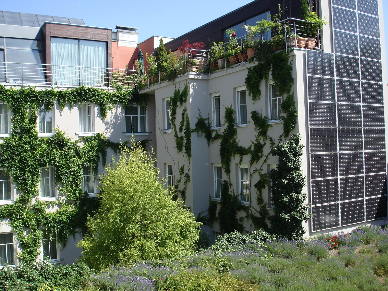 Kailash energia il verde pensile e i tetti verdi for Boutique hotel vienne