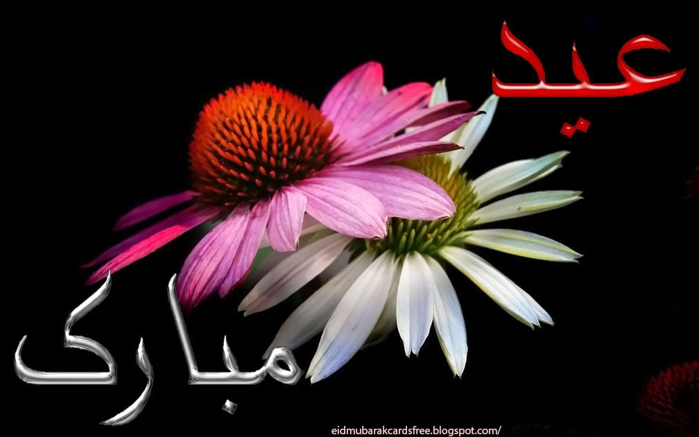 Beautiful eid ul fitr mubarak greetings cards for friends m4hsunfo