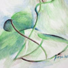 colored pencil drawing of philodendron, copyright Rose Welty