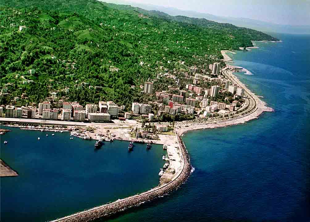 Rize 43