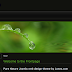 Pure Natural - 4 Columns Joomla Template