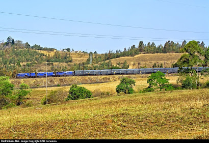 RailPictures.Net (294)