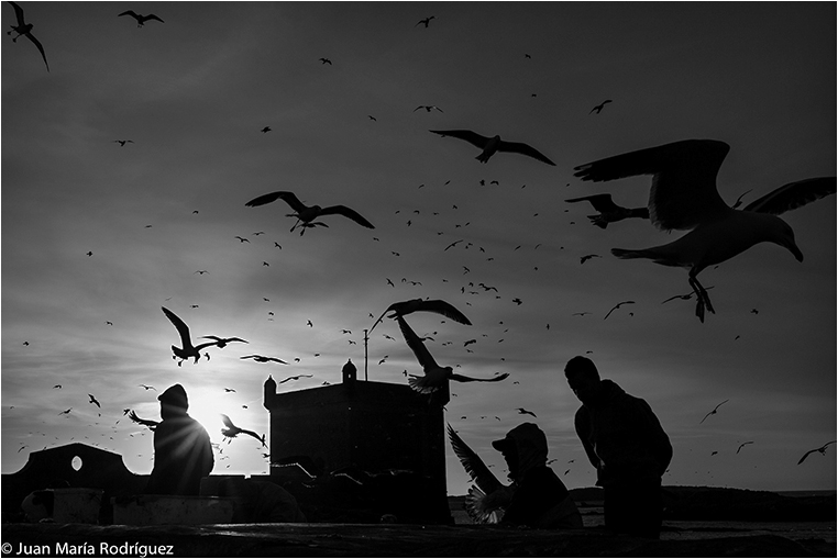 Emerging Photographers, Best Photo of the Day in Emphoka by Juan Maria Rodriguez, https://flic.kr/p/qLi9GF