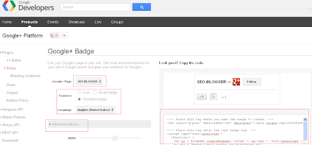 Google to Follow Widget for Blogger and Wordpress
