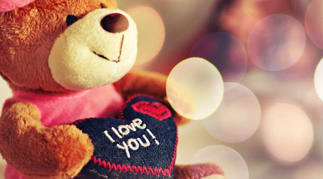Cute looking Teddy Day 2016 Images, Happy Teddy Day 2016 cutest images, Valentines Day 2016 cute