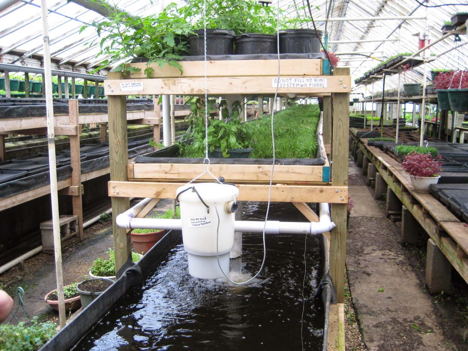 http://news.fiu.edu/2014/11/alumnus-finds-solutions-for-food-insecurity-through-aquaponics/82843